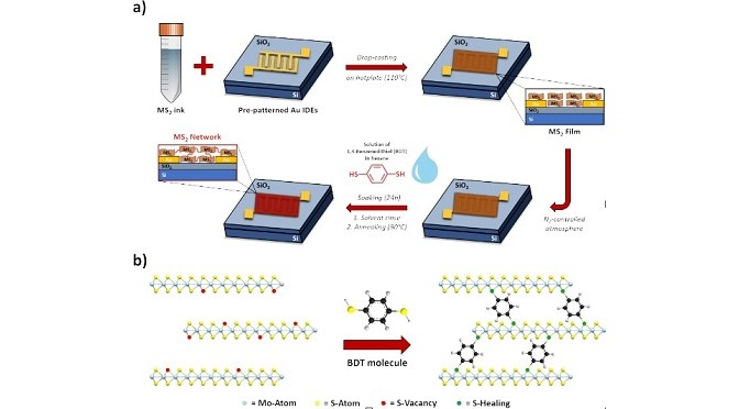 Boosting the electrical performance of 2D materials with molecular bridges