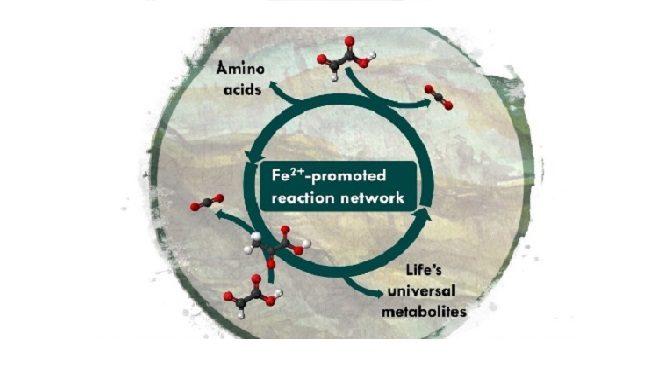 Un réseau précurseur de la biochimie du vivant identifié